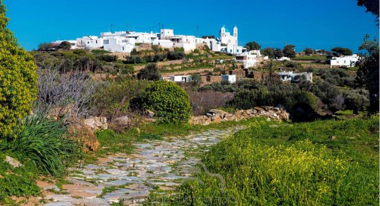 Sifnos Activities 19a