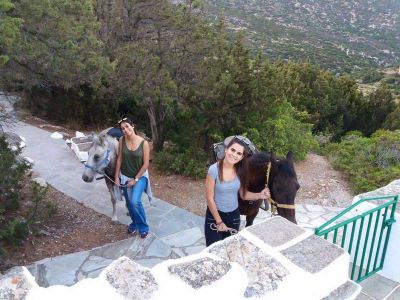 Sifnos Activities 49
